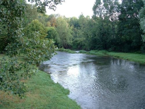 la,riviere .jpg