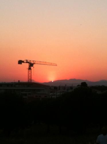 La grue et le soleil....jpg