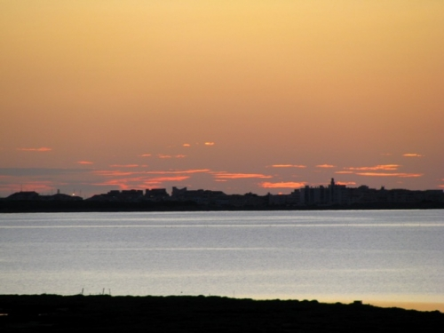 Barcarès les étangs à l'aube.jpg