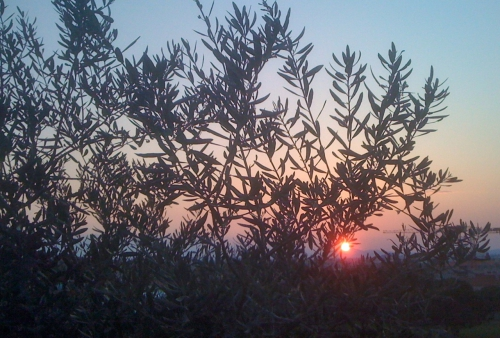 coucher soleil cabes.jpg