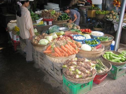 Tet 2004 Hoï Anh.jpg