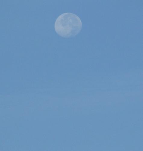 pas conne la lune !.jpg
