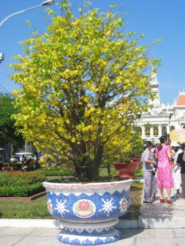 Tet Saïgon 2004.jpg